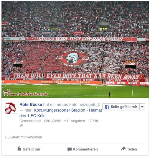 """Die Fan-Choreo zur zweiten Halbzeit: die """"Boyz"""" feierten ihre Rückkehr in die Südkurve. (Quelle: facebook.com/RoteBoecke)"""