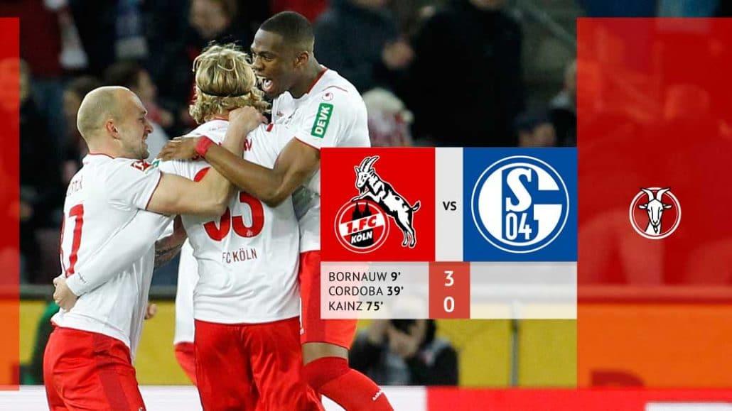 Schalke Fc Köln